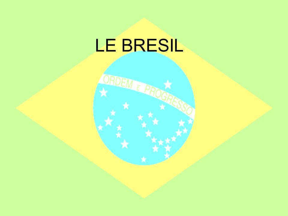 Les enfants au Brésil 7 000 000 des enfants travaillent au Brésil Mais depuis la fin des années 90: Le gouvernement prend des mesures: –Pour réduire le travail des enfants (inspecteurs du travail) –Pour développer la scolarisation (allocations scolaires)