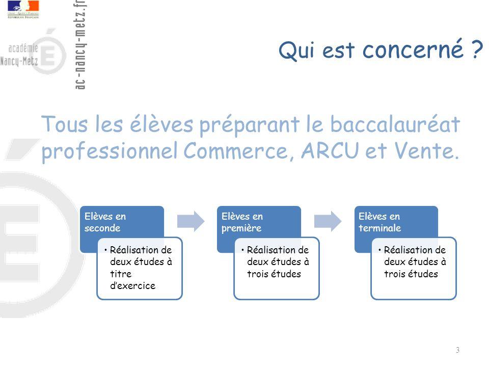 3 Tous les élèves préparant le baccalauréat professionnel Commerce, ARCU et Vente. Elèves en seconde Réalisation de deux études à titre dexercice Elèv