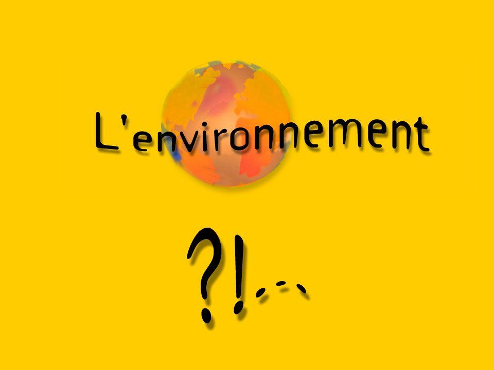 Les problèmes liés à l environnement se situent toujours au carrefour de disciplines diverses.