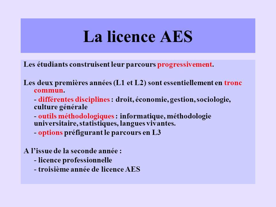 La licence AES 3 ème année En troisième année de licence AES, des parcours distincts sont proposés : –Ressources Humaines –Administration Générale et Territoriale –Administration du Secteur Sanitaire et Social –Enseignement (CAPES…) Pas de vocation professionnelle directe ; but : poursuite détudes en master.