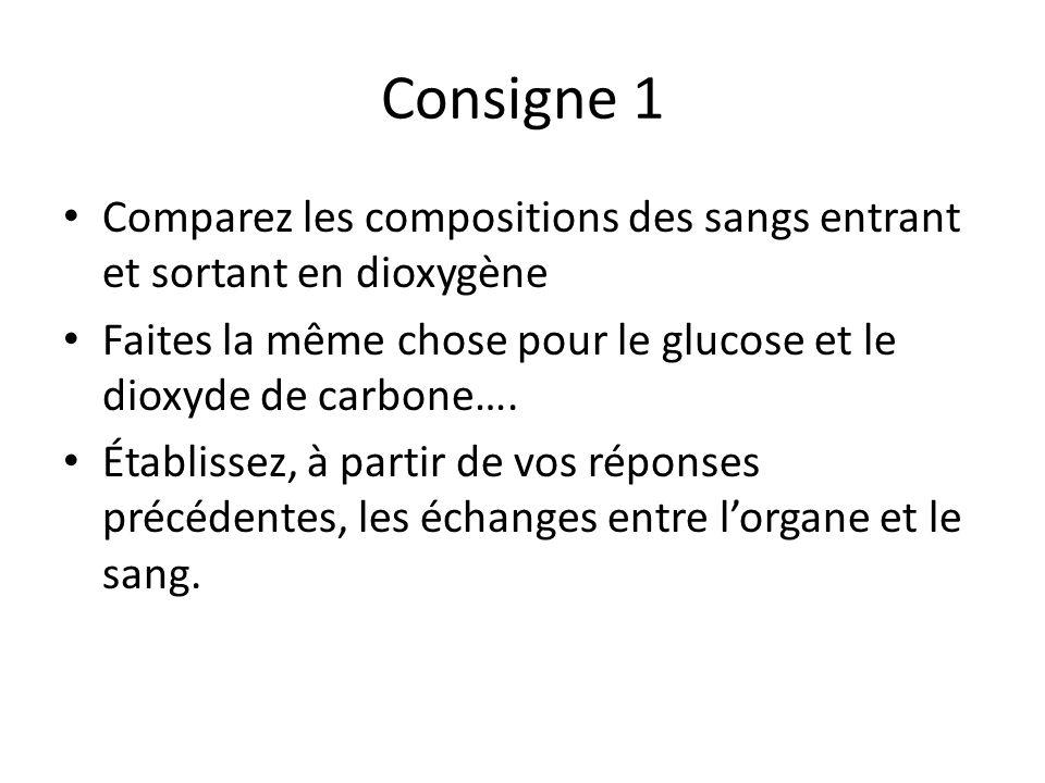 Consigne 1 Comparez les compositions des sangs entrant et sortant en dioxygène Faites la même chose pour le glucose et le dioxyde de carbone…. Établis