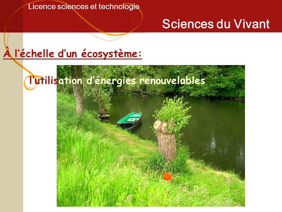 Licence sciences et technologie Sciences du Vivant À léchelle dun écosystème: lutilisation dénergies renouvelables
