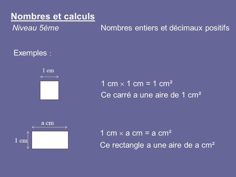 1 cm 1 cm = 1 cm² Ce carré a une aire de 1 cm² 1 cm 1 cm a cm = a cm² Ce rectangle a une aire de a cm² a cm 1 cm Exemples : Nombres et calculs Niveau