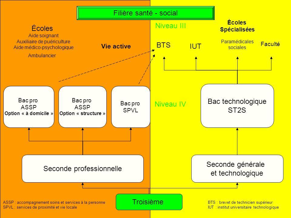 Seconde professionnelle Seconde générale et technologique Troisième Bac pro ASSP Option « à domicile » Bac pro ASSP Option « structure » Bac pro SPVL