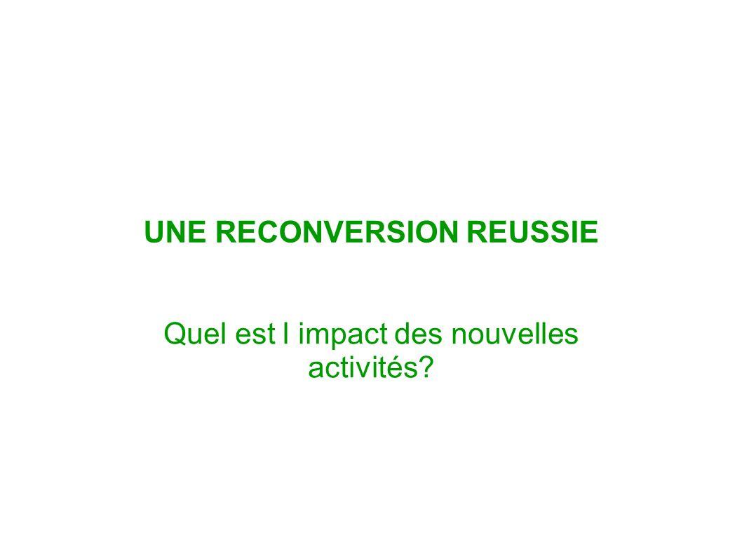UNE RECONVERSION REUSSIE Quel est l impact des nouvelles activités?