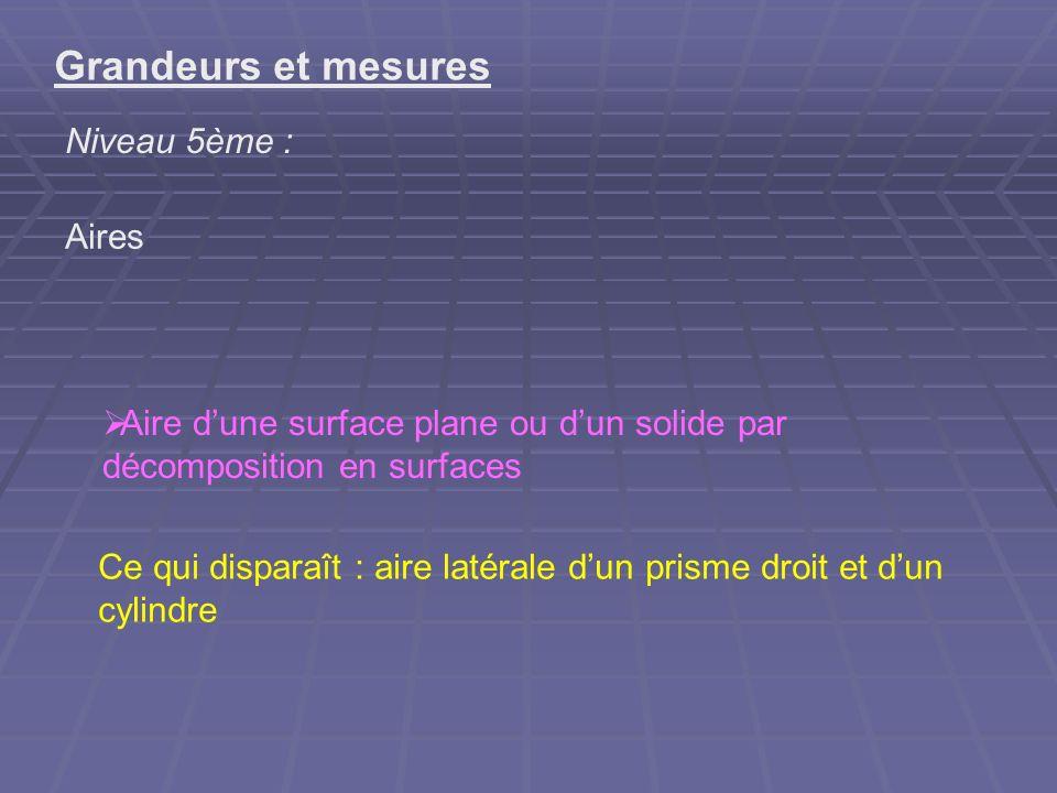 Grandeurs et mesures Niveau 5ème : Aires Ce qui disparaît : aire latérale dun prisme droit et dun cylindre Aire dune surface plane ou dun solide par d