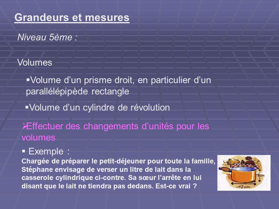 Grandeurs et mesures Niveau 5ème : Volumes Volume dun prisme droit, en particulier dun parallélépipède rectangle Effectuer des changements dunités pou