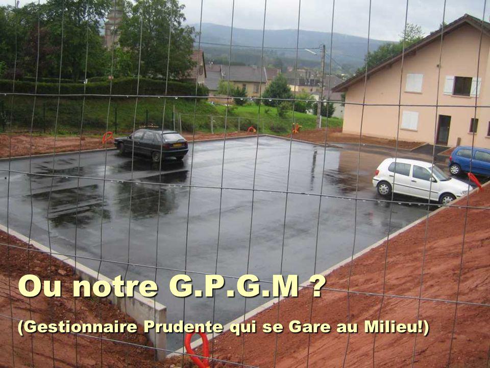 Ou notre G.P.G.M ? (Gestionnaire Prudente qui se Gare au Milieu!)