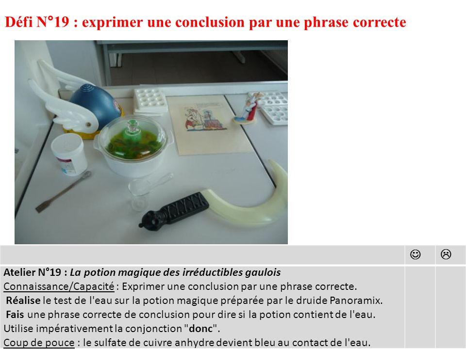 Défi N°19 : exprimer une conclusion par une phrase correcte Atelier N°19 : La potion magique des irréductibles gaulois Connaissance/Capacité : Exprimer une conclusion par une phrase correcte.