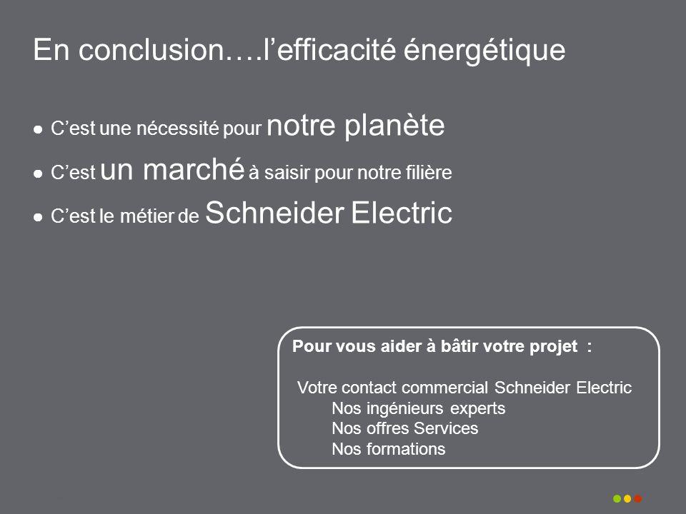 Schneider Electric 29 Pour vous aider à bâtir votre projet : Votre contact commercial Schneider Electric Nos ingénieurs experts Nos offres Services No