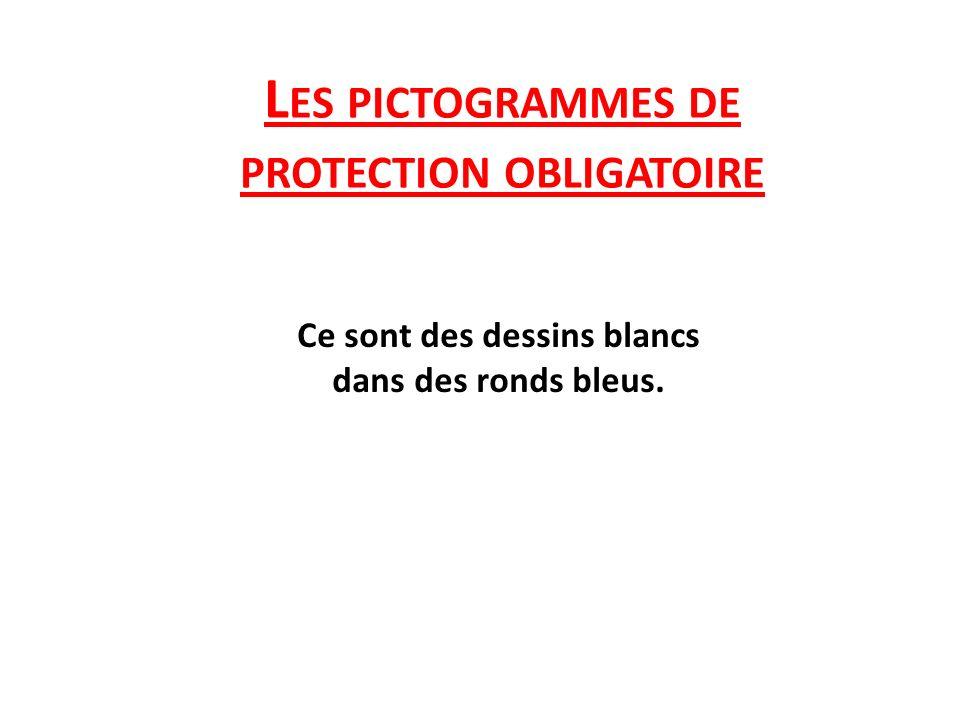 L ES PICTOGRAMMES DE PROTECTION OBLIGATOIRE Ce sont des dessins blancs dans des ronds bleus.