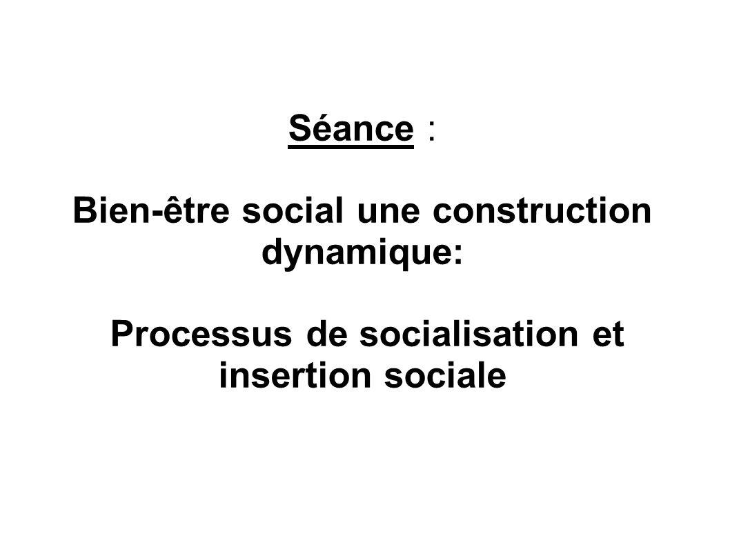 Séance : Bien-être social une construction dynamique: Processus de socialisation et insertion sociale