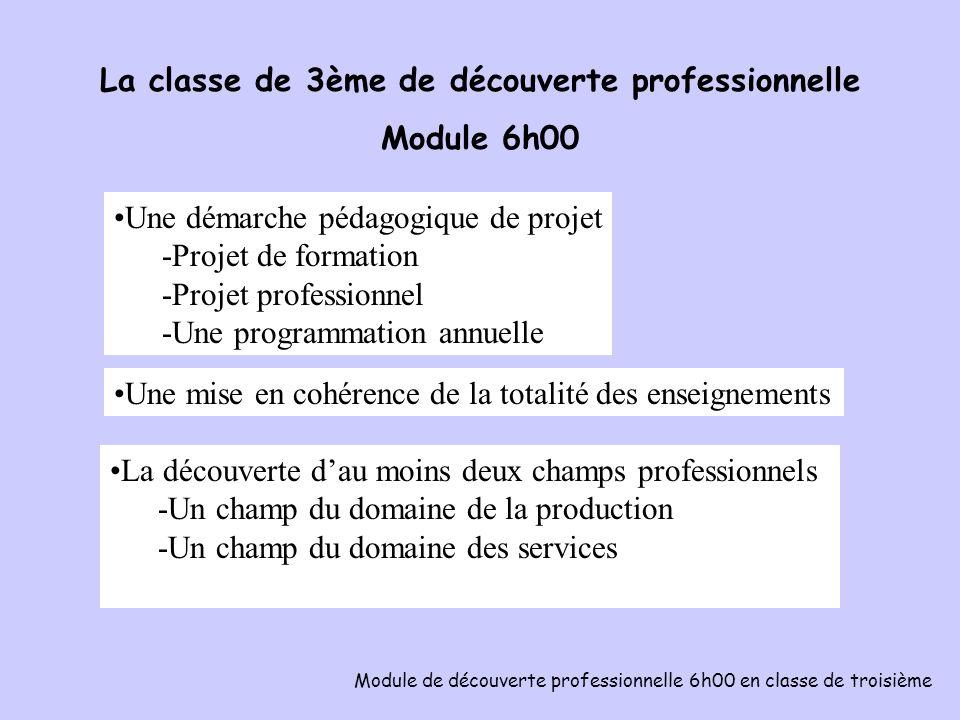 La classe de 3ème de découverte professionnelle Module 6h00 Module de découverte professionnelle 6h00 en classe de troisième Une équipe pédagogique : des enseignants volontaires, une équipe restreinte, un chef de travaux, un COP, un CPE, un documentaliste.