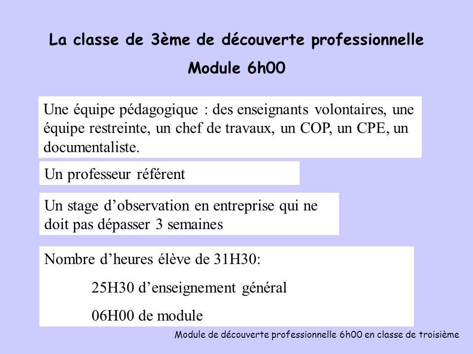 La classe de 3ème de découverte professionnelle Module 6h00 Module de découverte professionnelle 6h00 en classe de troisième Une équipe pédagogique :