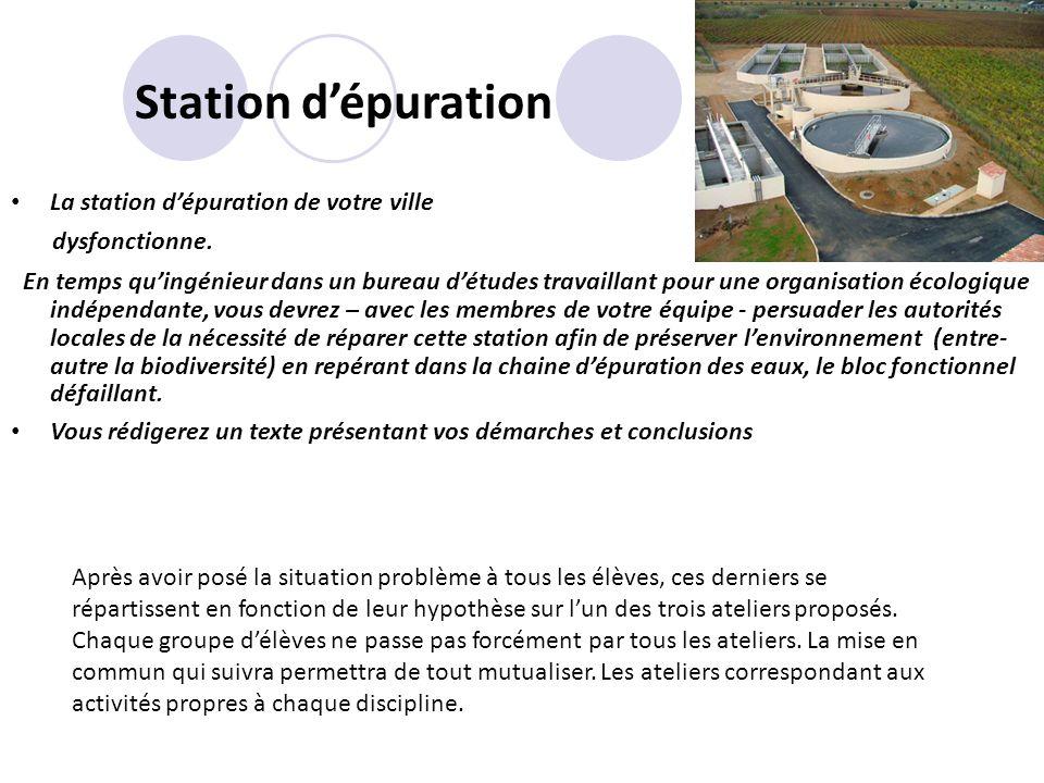 Station dépuration La station dépuration de votre ville dysfonctionne. En temps quingénieur dans un bureau détudes travaillant pour une organisation é