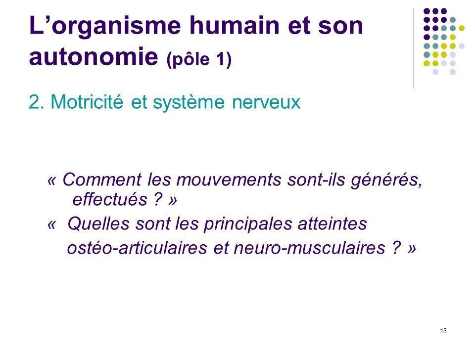 13 Lorganisme humain et son autonomie (pôle 1) 2. Motricité et système nerveux « Comment les mouvements sont-ils générés, effectués ? » « Quelles sont