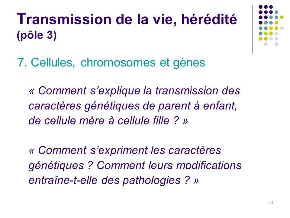 23 T ransmission de la vie, hérédité (pôle 3) 7. Cellules, chromosomes et gènes « Comment sexplique la transmission des caractères génétiques de paren
