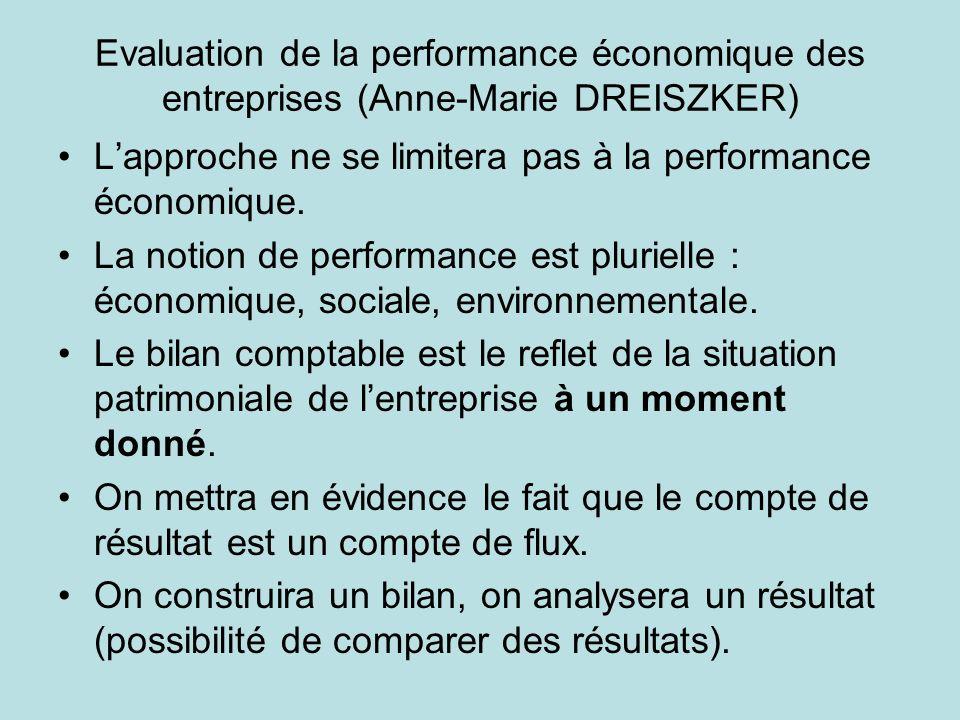 Evaluation de la performance économique des entreprises (Anne-Marie DREISZKER) Lapproche ne se limitera pas à la performance économique. La notion de