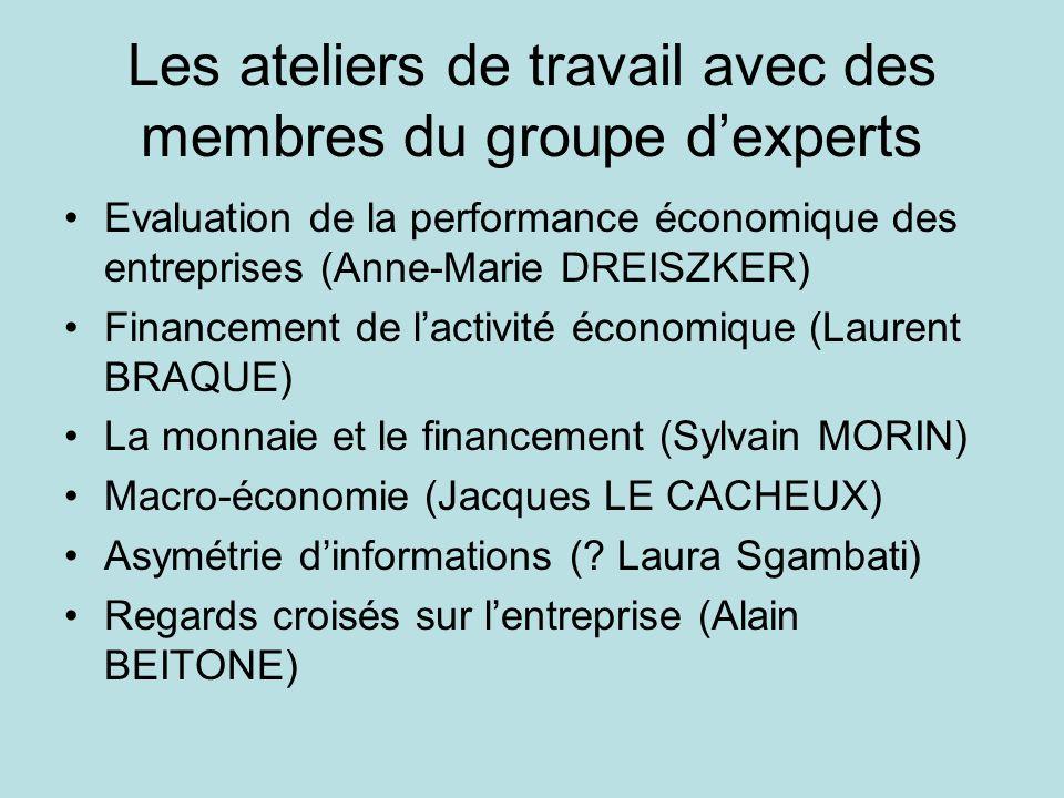 Les ateliers de travail avec des membres du groupe dexperts Evaluation de la performance économique des entreprises (Anne-Marie DREISZKER) Financement