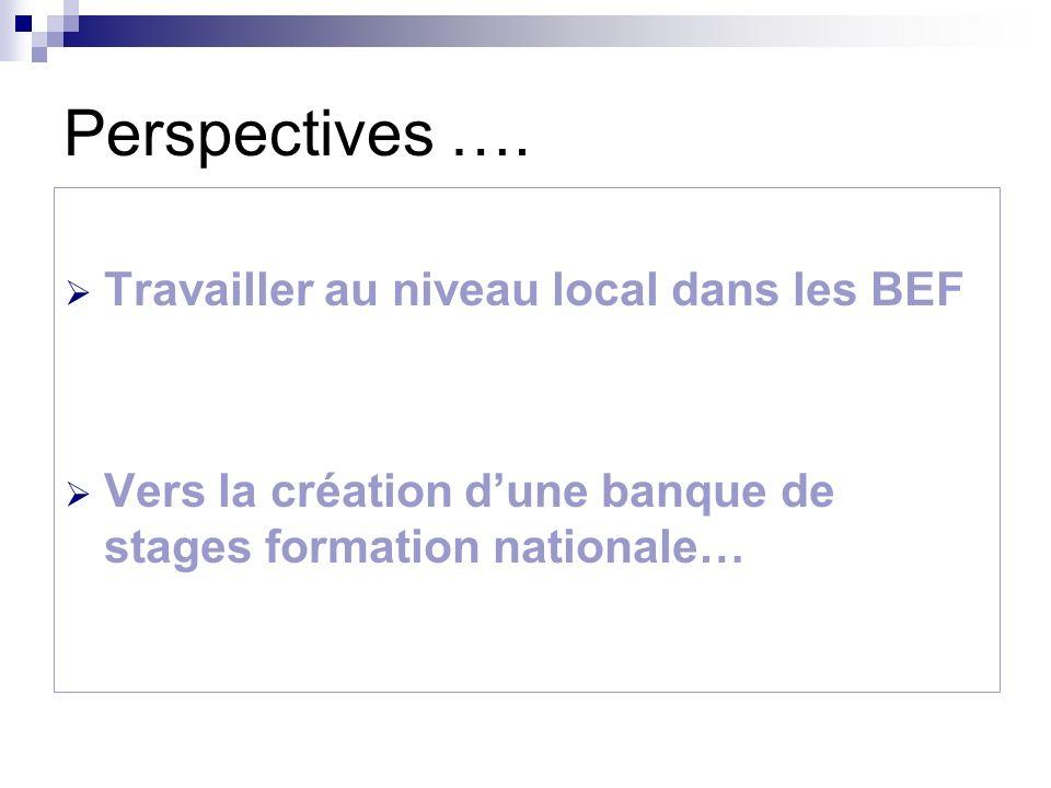 Perspectives …. Travailler au niveau local dans les BEF Vers la création dune banque de stages formation nationale…