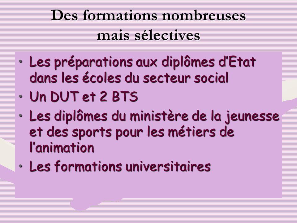 Les préparations aux diplômes dEtat dans les écoles du secteur socialLes préparations aux diplômes dEtat dans les écoles du secteur social Un DUT et 2
