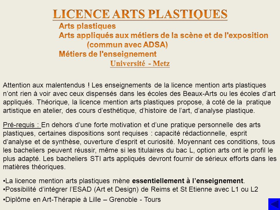 Attention aux malentendus ! Les enseignements de la licence mention arts plastiques nont rien à voir avec ceux dispensés dans les écoles des Beaux-Art