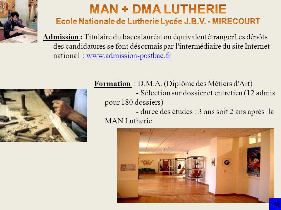 Formation : D.M.A. (Diplôme des Métiers d'Art) - Sélection sur dossier et entretien (12 admis pour 180 dossiers) - durée des études : 3 ans soit 2 ans