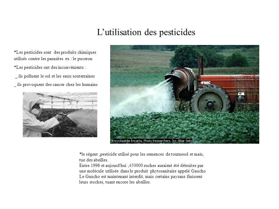 Lutilisation des pesticides *Les pesticides sont des produits chimiques utilisés contre les parasites ex : le puceron *Les pesticides ont des inconvén