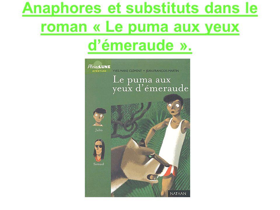 Anaphores et substituts dans le roman « Le puma aux yeux démeraude ».