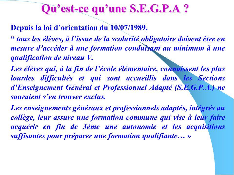 Quest-ce quune S.E.G.P.A ? Depuis la loi dorientation du 10/07/1989, tous les élèves, à lissue de la scolarité obligatoire doivent être en mesure dacc