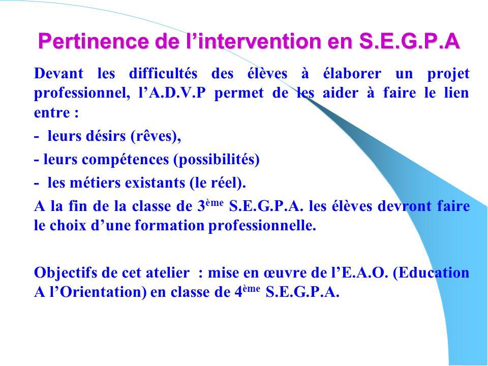 Pertinence de lintervention en S.E.G.P.A Devant les difficultés des élèves à élaborer un projet professionnel, lA.D.V.P permet de les aider à faire le