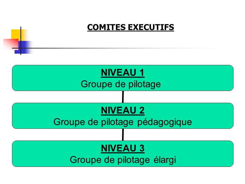 COMITES EXECUTIFS NIVEAU 1 Groupe de pilotage NIVEAU 2 Groupe de pilotage pédagogique NIVEAU 3 Groupe de pilotage élargi