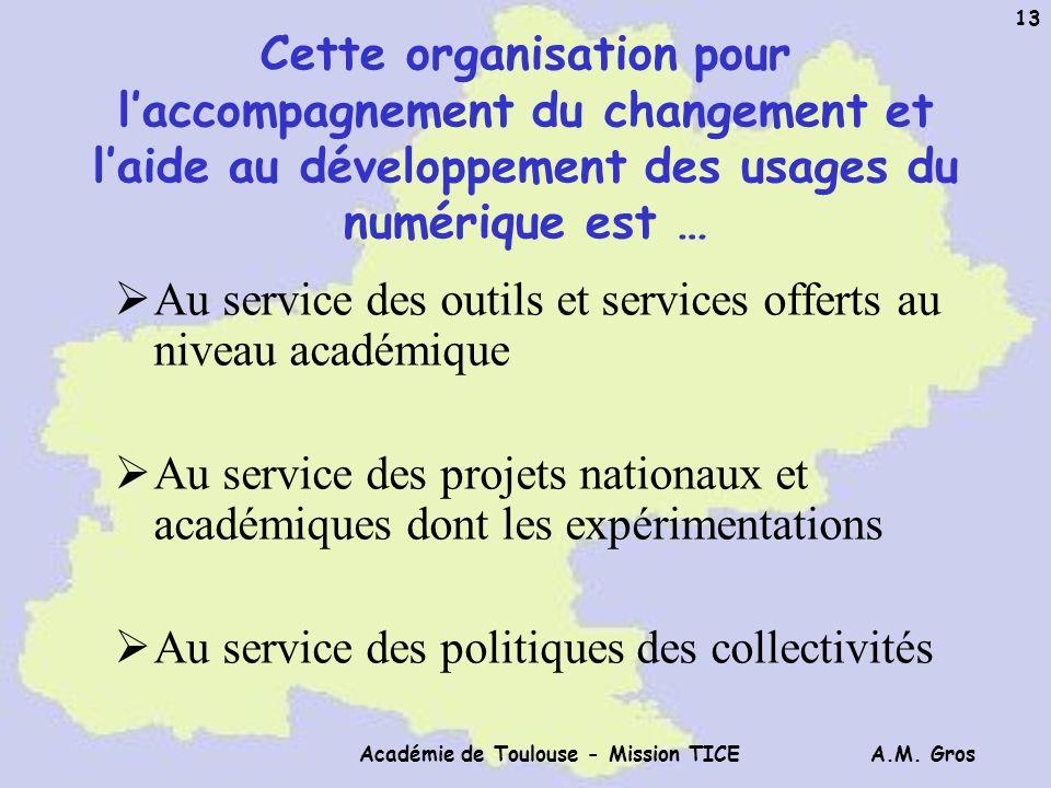 A.M. Gros Académie de Toulouse - Mission TICE 13 Cette organisation pour laccompagnement du changement et laide au développement des usages du numériq