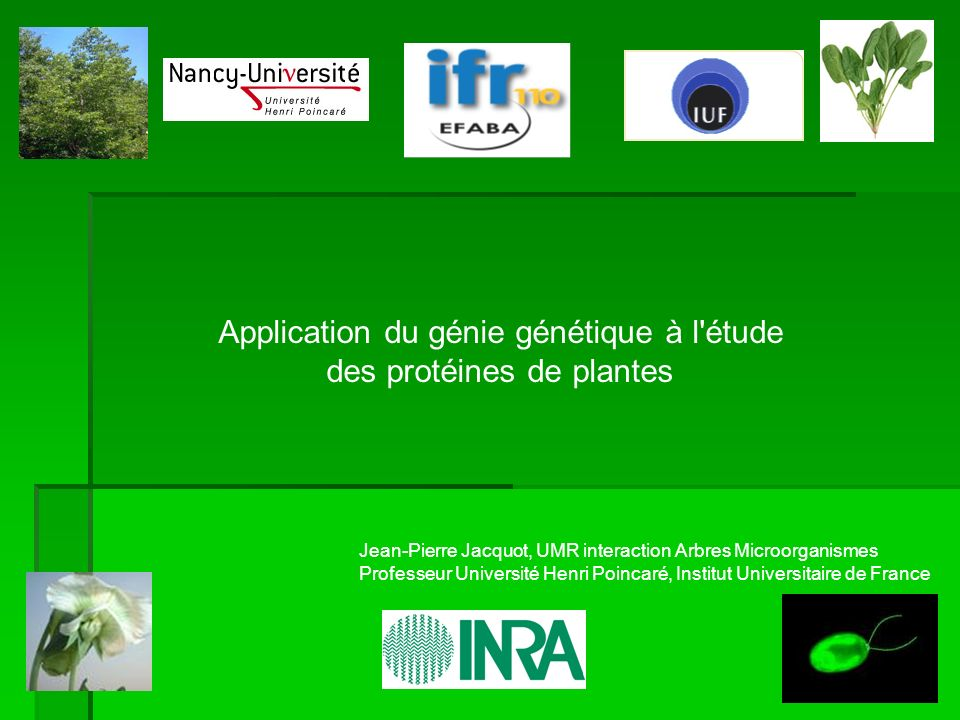 Application du génie génétique à l étude des protéines de plantes Jean-Pierre Jacquot, UMR interaction Arbres Microorganismes Professeur Université Henri Poincaré, Institut Universitaire de France