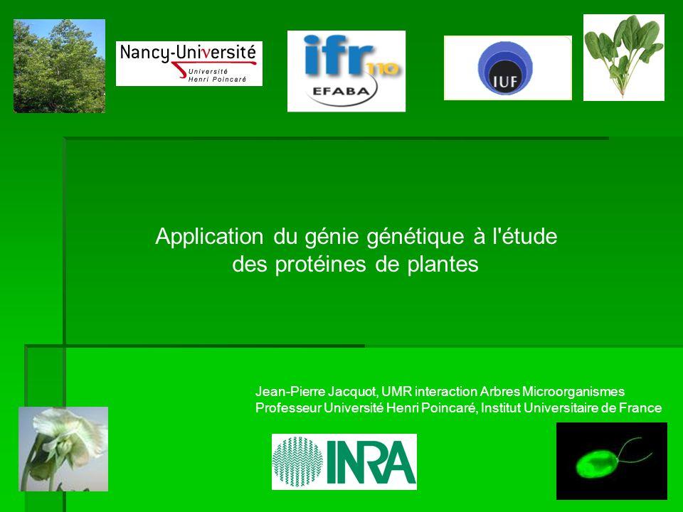 Débouchés Industrie pharmaceutique R&D Enseignement supérieur et recherche publique