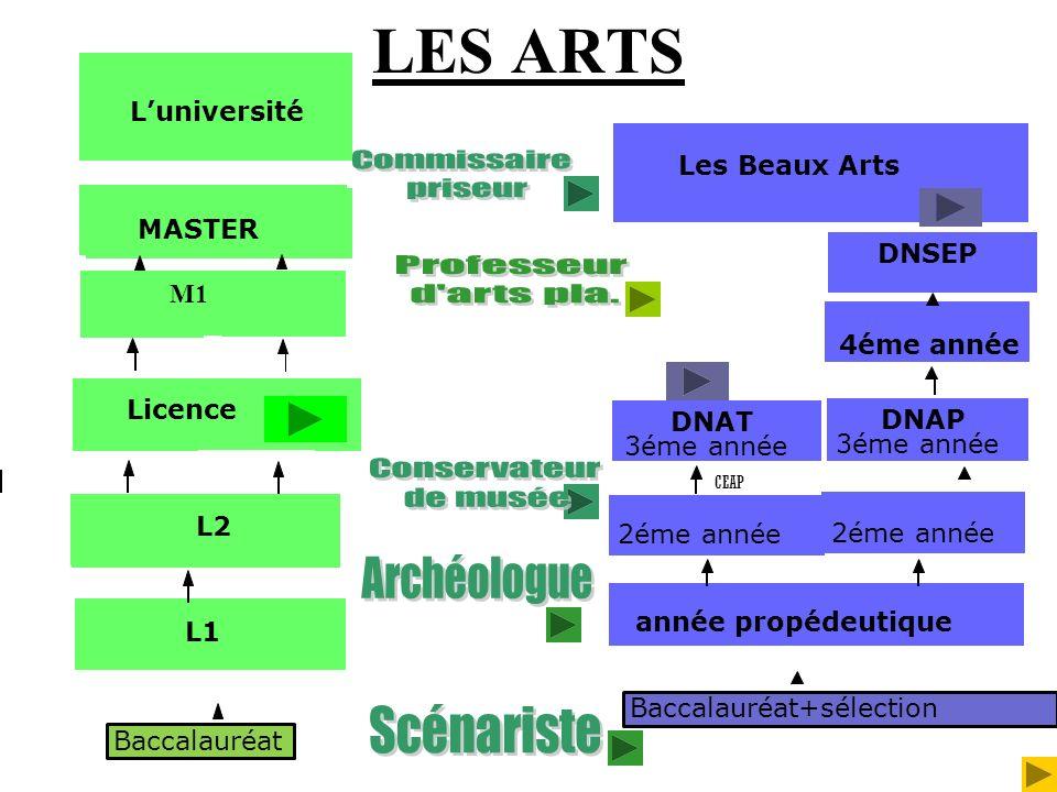 LES ARTS Baccalauréat Luniversité L1 Licence L2 MASTER M1 Baccalauréat+sélection Les Beaux Arts année propédeutique 2éme année DNAT 3éme année CEAP 2é