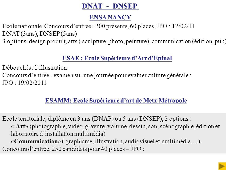 Ecole territoriale, diplôme en 3 ans (DNAP) ou 5 ans (DNSEP), 2 options : « Art» (photographie, vidéo, gravure, volume, dessin, son, scénographie, édi