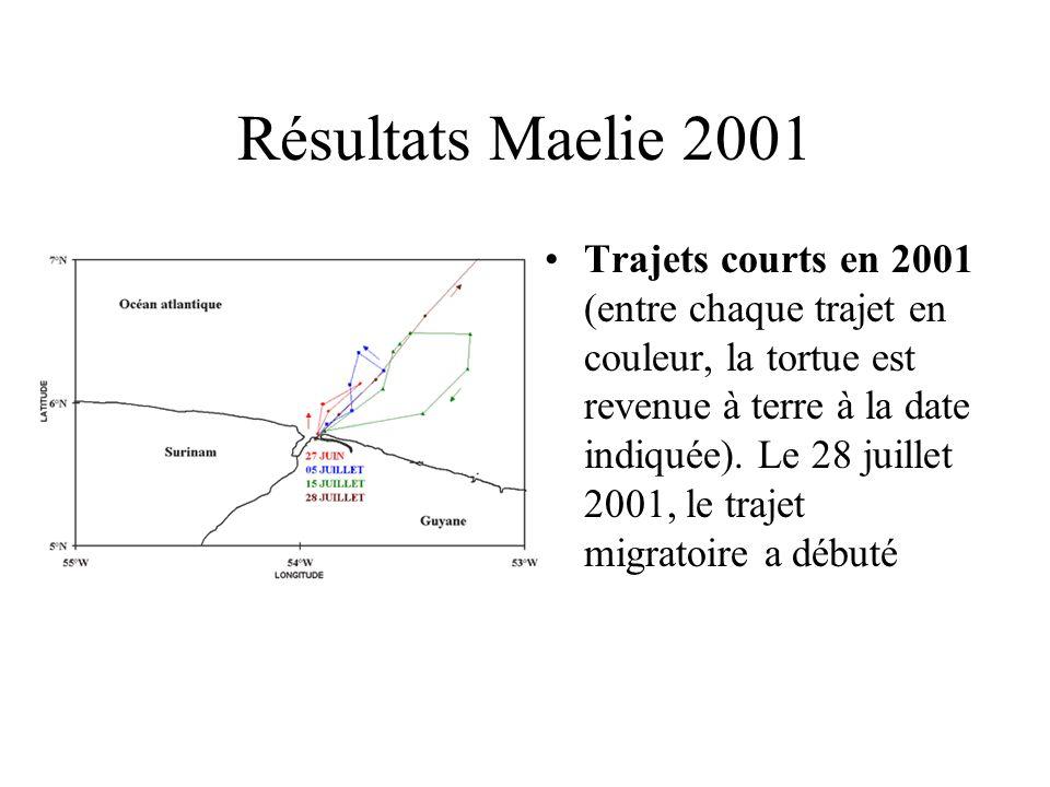 Résultats Maelie 2001 Trajets courts en 2001 (entre chaque trajet en couleur, la tortue est revenue à terre à la date indiquée). Le 28 juillet 2001, l
