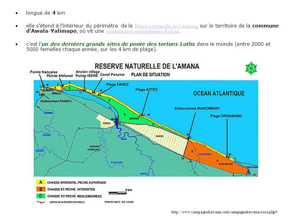 longue de 4 km elle s'étend à l'intérieur du périmètre de la Réserve naturelle de l'Amana, sur le territoire de la commune d'Awala-Yalimapo, où vit un