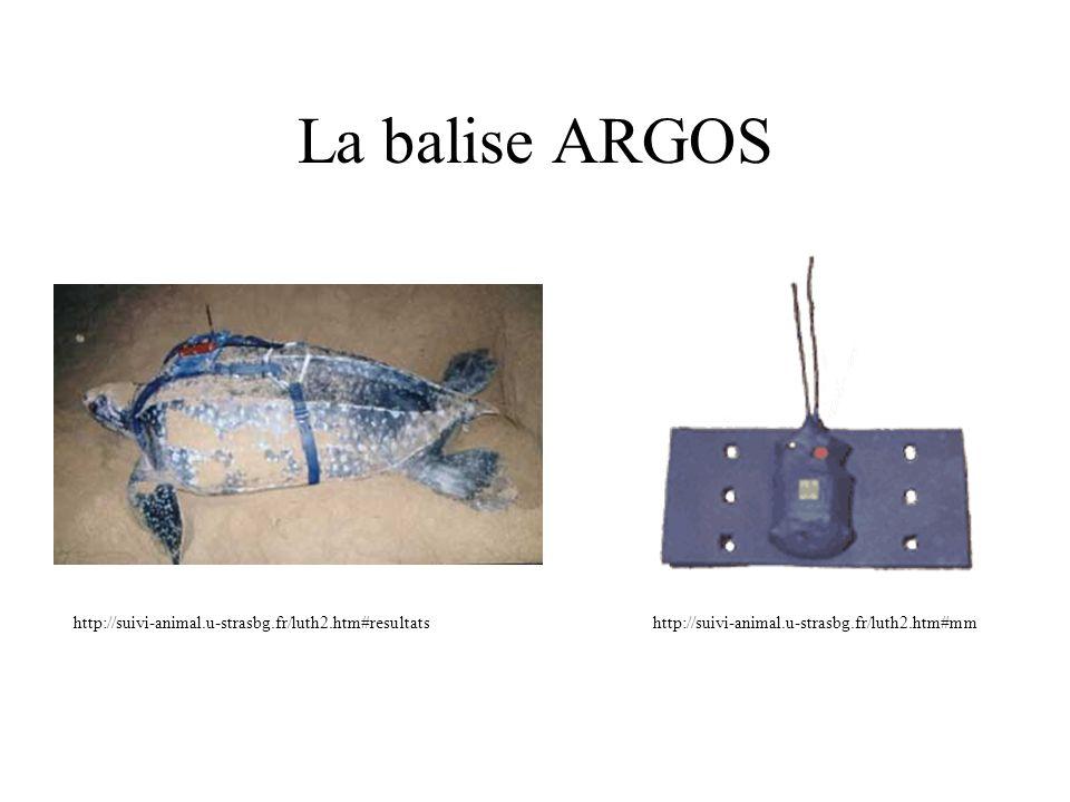 La balise ARGOS http://suivi-animal.u-strasbg.fr/luth2.htm#resultatshttp://suivi-animal.u-strasbg.fr/luth2.htm#mm