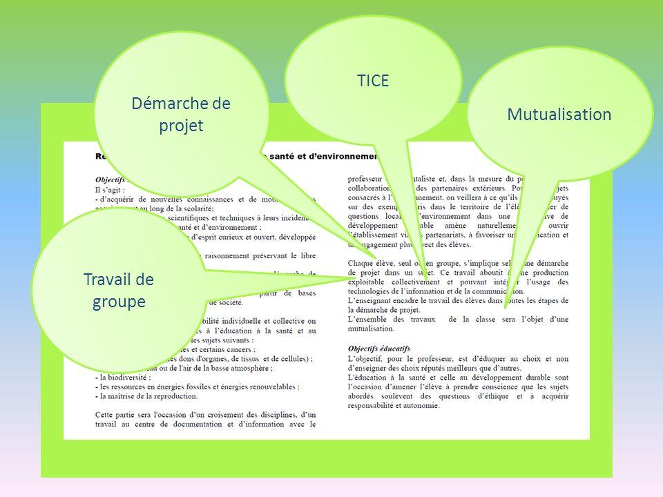 Travail de groupe Démarche de projet Mutualisation TICE