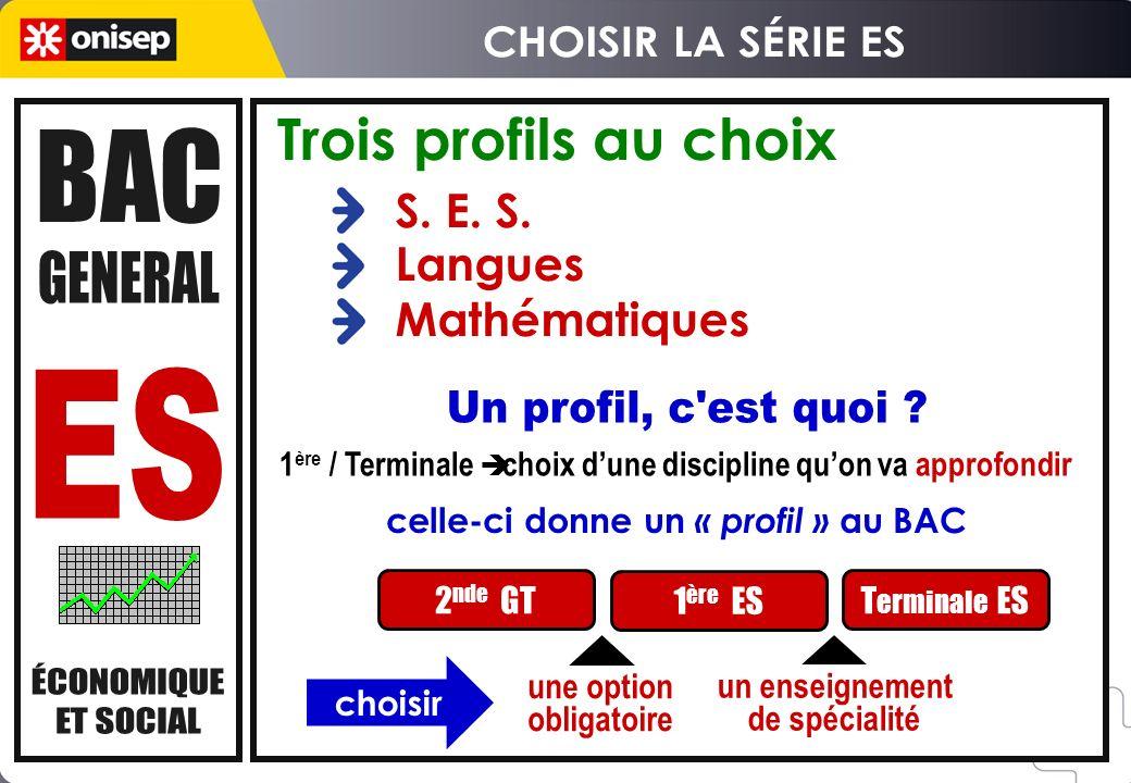 Trois profils au choix S.E. S.
