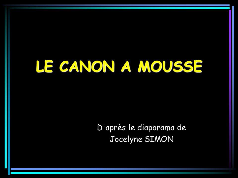 LE CANON A MOUSSE D après le diaporama de Jocelyne SIMON