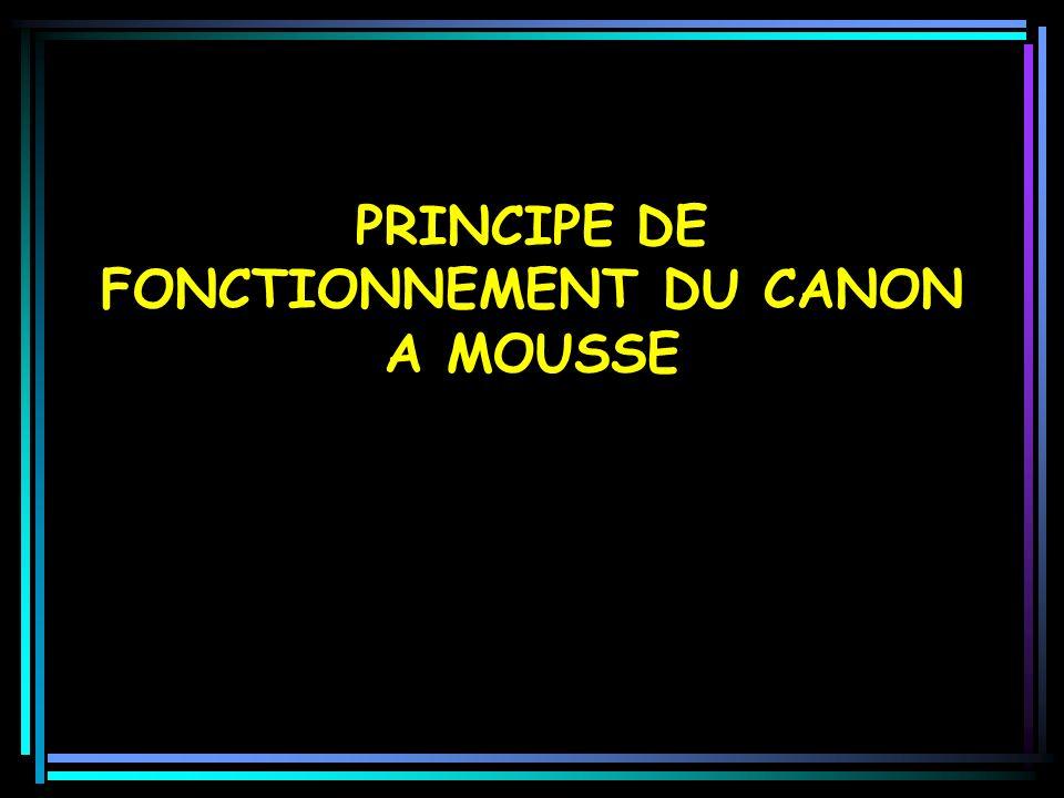 PRINCIPE DE FONCTIONNEMENT DU CANON A MOUSSE