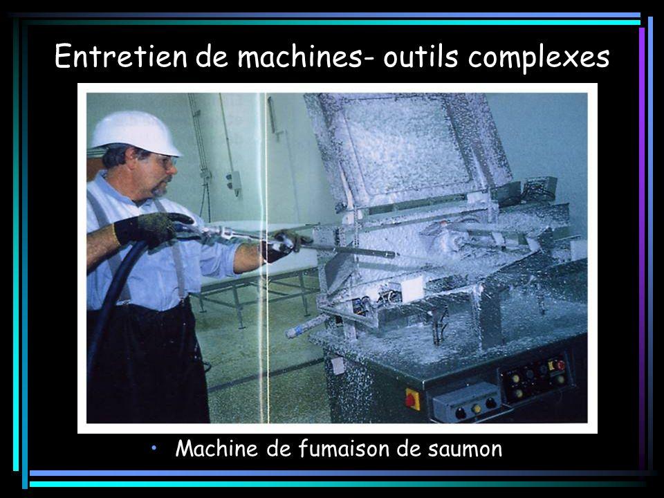Entretien de machines- outils complexes Machine de fumaison de saumon