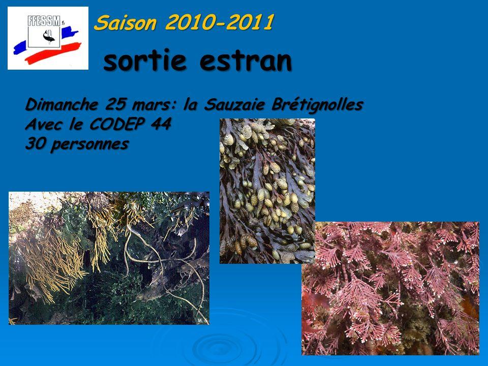 Formation niveau 2 Saison 2010-2011 Avec le CODEP 44 : merci à Sylvie Salaün Cours à Nantes durant lhiver 11-12 mai validation à la Trinité et en rivière dEtel