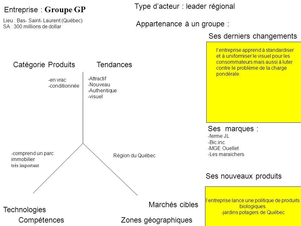 Entreprise : Groupe GP Ses derniers changements Type dacteur : leader régional Marchés cibles Zones géographiques Catégorie ProduitsTendances Technolo