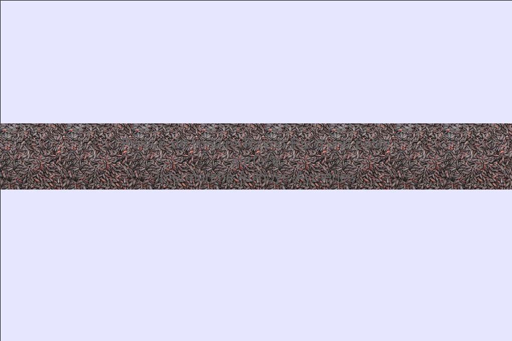 Relevé de linéaire Rayon Riz d'une petite surface Intermarché Aulnoye-Aymeries