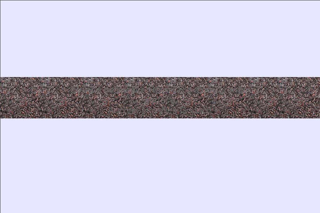 Comparaison des linéaires Grande surface et Petite surface En grande surface les riz express, segment émergent du marché actuel du riz, sont mis en avant en ce sens où il sont séparés des autres produits riz à la différence de ce que l on peut constater dans les rayons de la petite surface.