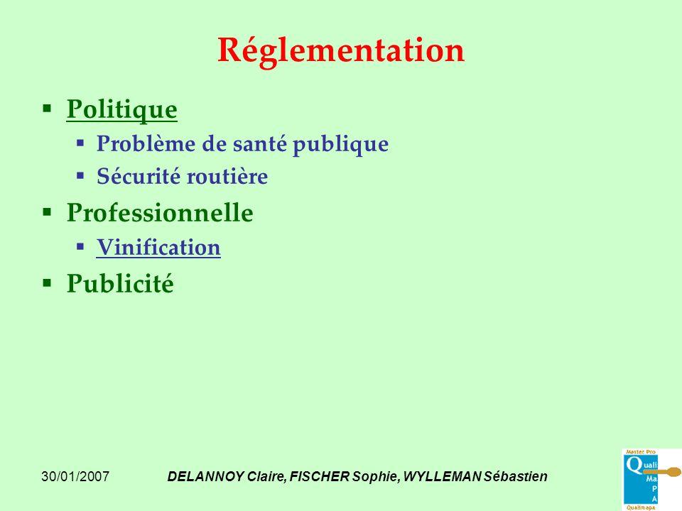 30/01/2007DELANNOY Claire, FISCHER Sophie, WYLLEMAN Sébastien Réglementation Politique Problème de santé publique Sécurité routière Professionnelle Vi